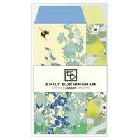Emily Burningham envelope S delphinium