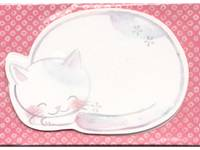 name card Sleeping Cat