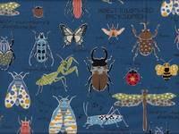Insect Encyclopedia blau