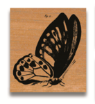 Rubber Stamp Schmetterling Fig.2